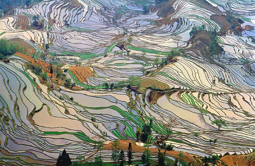 Terrazzamenti per le colture di riso | Elettraprodan\'s Blog